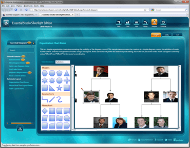 Syncfusion Essential Diagram adds overview control