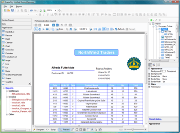 ActiveReports 7 adds WPF Viewer