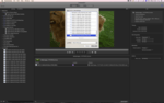 About Video Edit Components for Apple Compressor